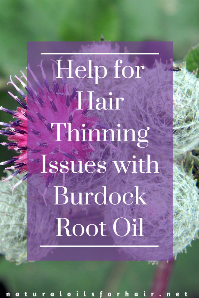 Help for Hair Thinning Issues with Burdock Root Oil