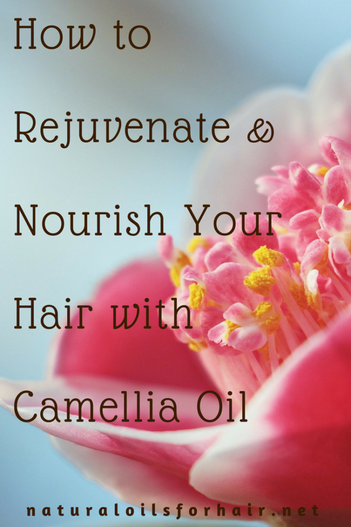 Rejuvenate And Nourish Your Hair With Camellia Oil