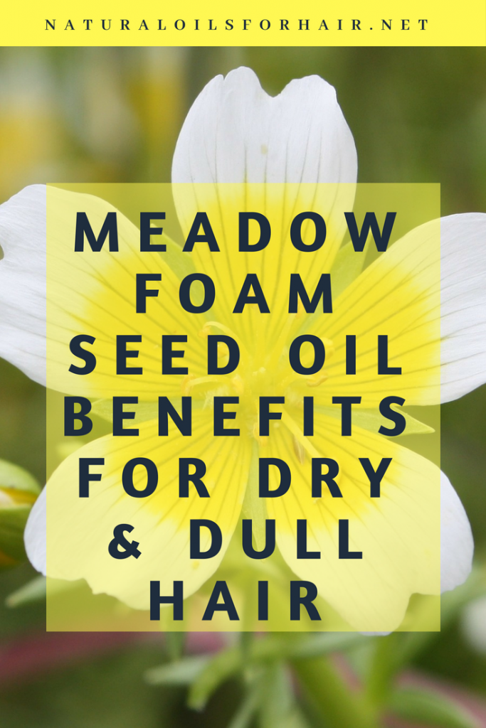 Meadowfoam-Seed-Oil-Benefits-for-Dry-and-Dull-Hair