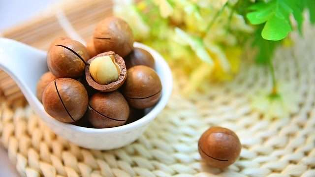 macadamia-nuts-oil-for-hair-growth