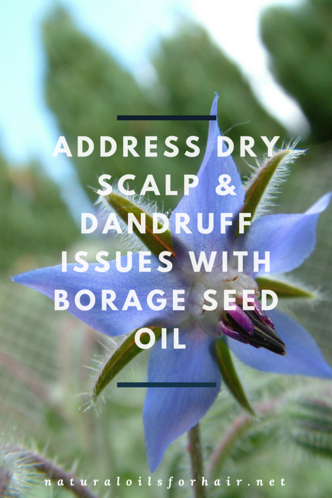 Address Dry Scalp and Dandruff Issues with Borage Seed Oil