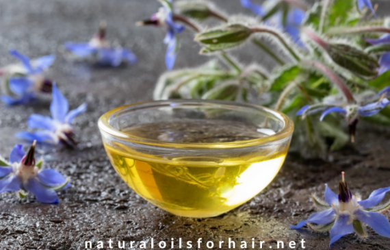 Dry Scalp & Dandruff Issues Addressed with Borage Seed Oil