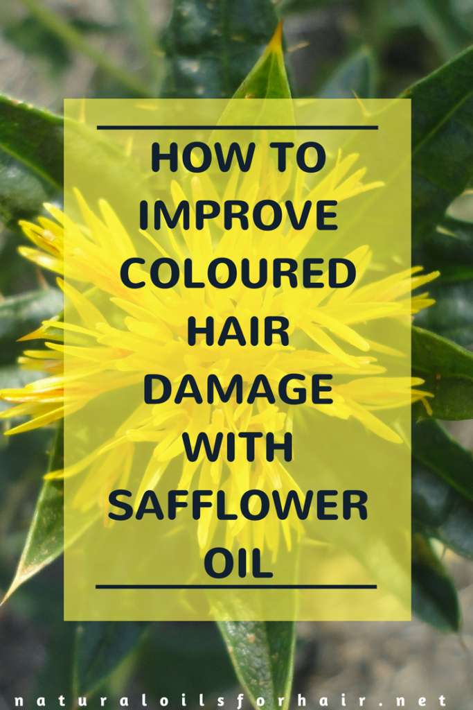 Improve the look of hair damaged by colour with these safflower oil treatments for hair