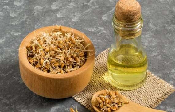 intense dry hair treatment with wheat germ oil