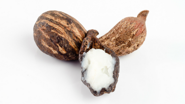 shea nut oil benefits for hair