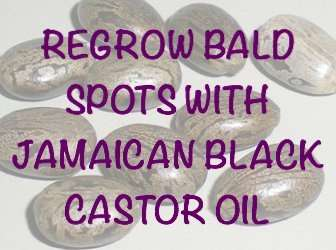 regrow-bald-spots-with-jamaican-black-castor-oil