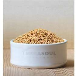 terrasoul Superfoods Golden Flax Seeds