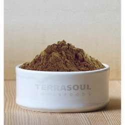 terrasoul-foods-amla-powder
