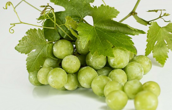 Get Better Protein Treatments with Grapeseed Oil
