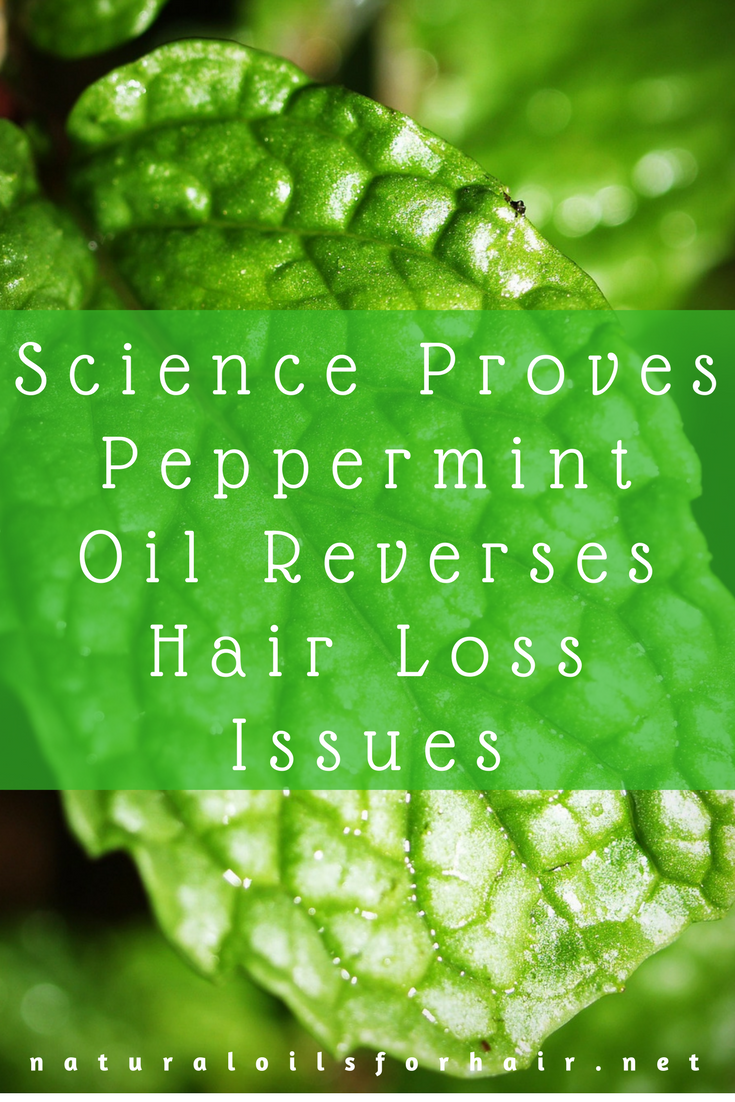 Science Proves Peppermint Oil Reverses Hair Loss Issues
