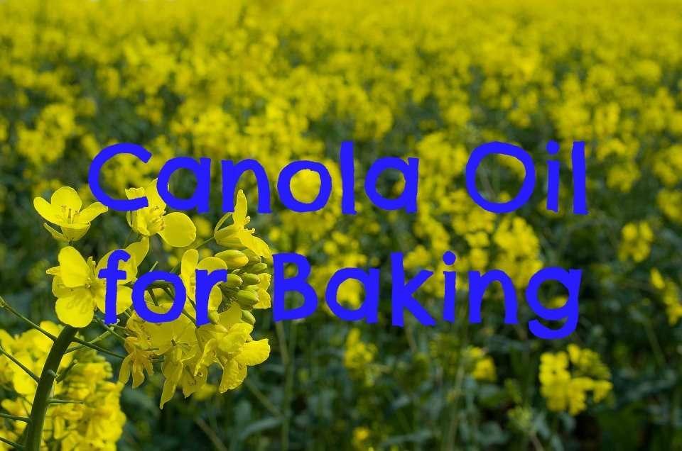 canola-oil-for-baking