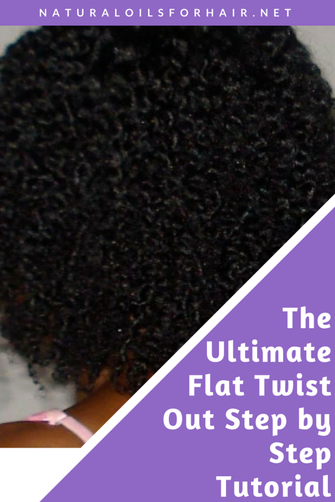 Ultimate Flat Twist Out Step by Step Tutorial