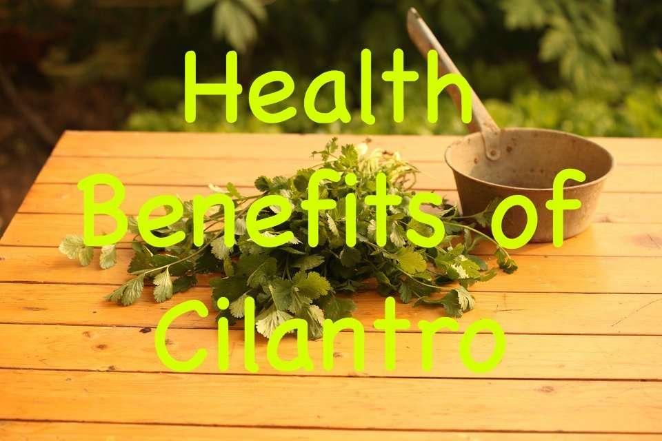 health-benefits-of-cilantro