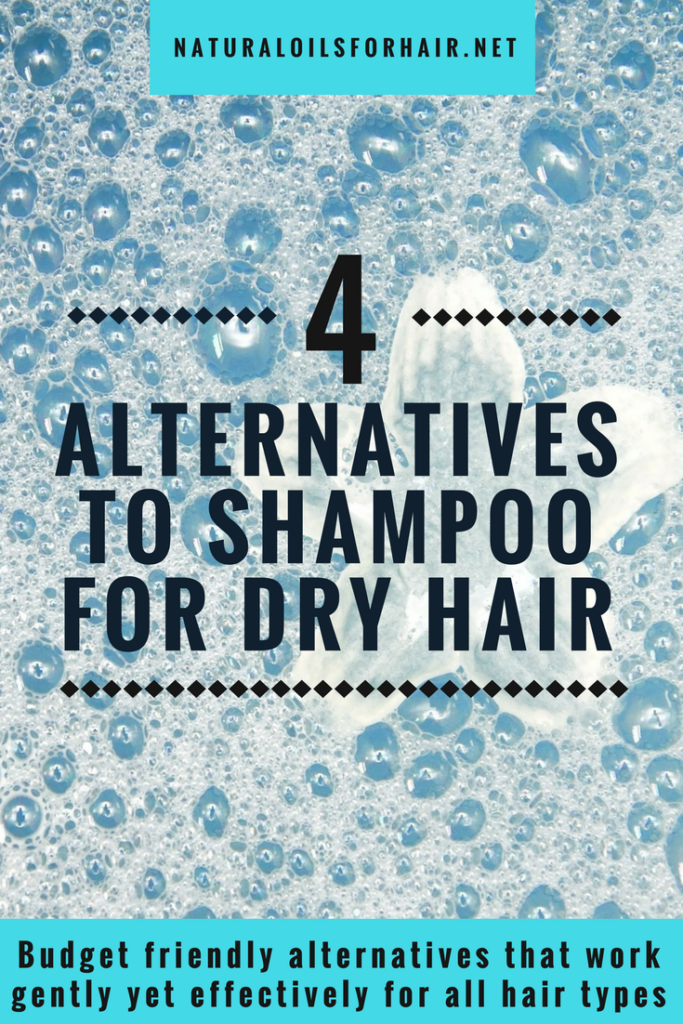4 gentle, effective and budget friendly alternatives to traditional shampoo for dry hair