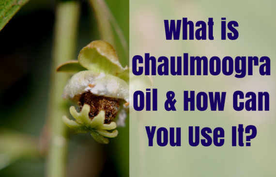 what-is-chaulmoogra-oil-and-benefits-for-skin