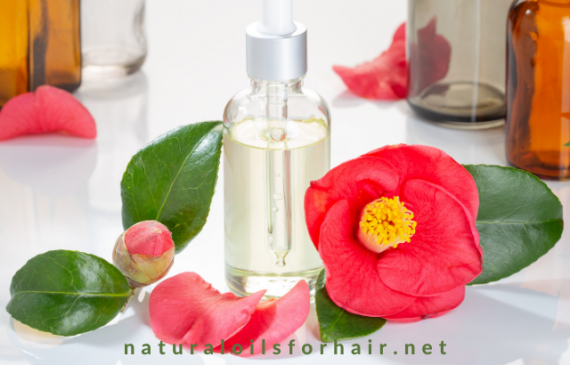 3 Different Types of Camellia Oil and Which is Best for the Hair