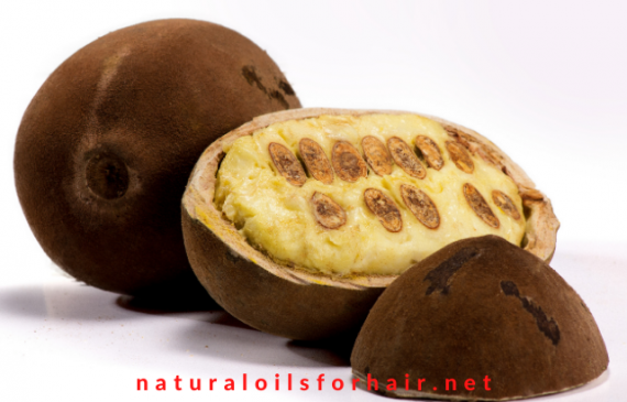 7 benefits of cupuacu butter for hair