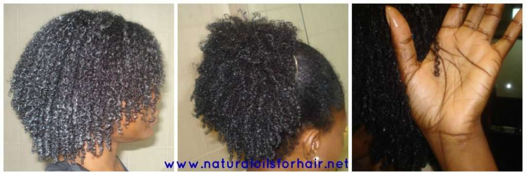 The Power Of Aztec Secret Healing Clay For Hair Natural Oils For