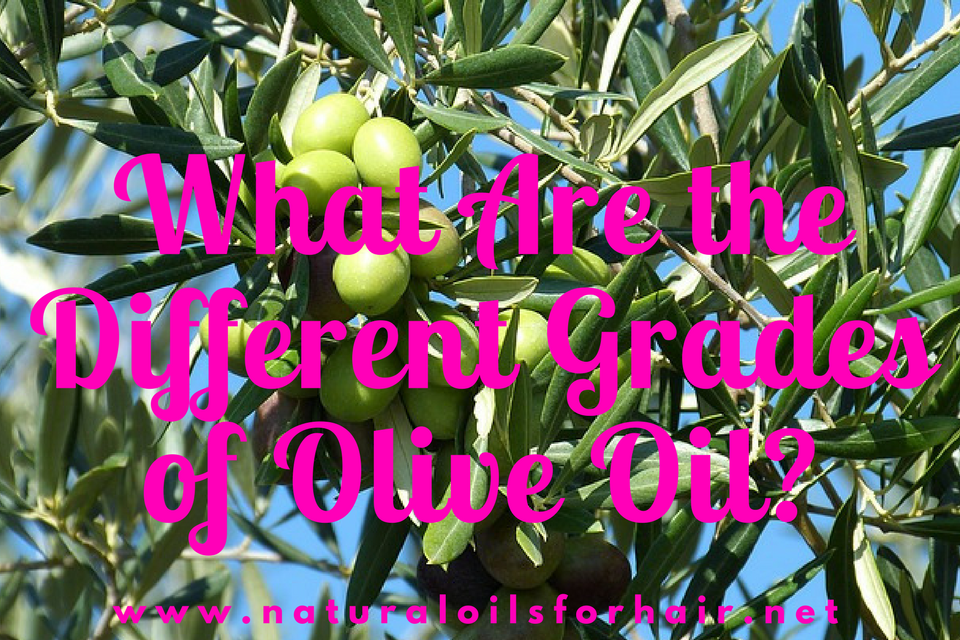 what are the different grades of olive oil