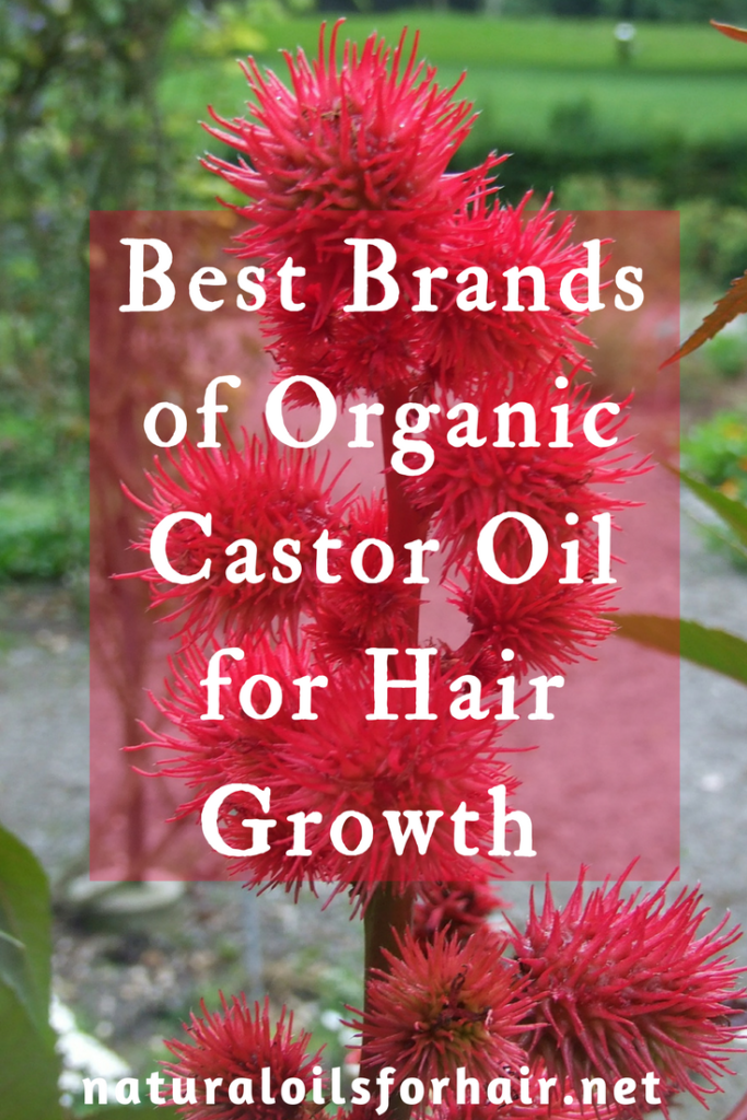 Best Brands Organic Castor Oil for Hair Growth 2