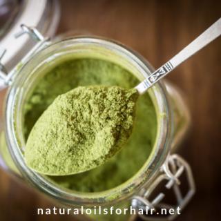 moringa leaf powder health benefits