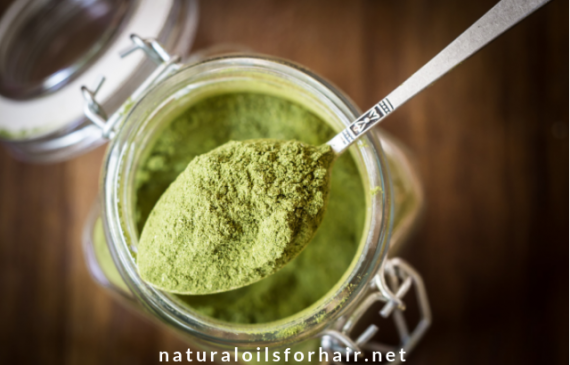moringa leaf powder health benefits