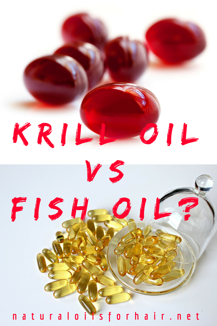 What Are the Differences Between Krill Oil and Fish Oil?