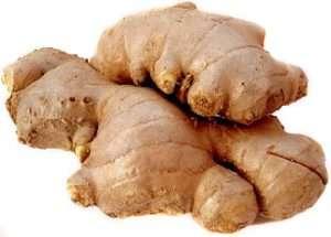Indian Blend Fresh Ginger Root
