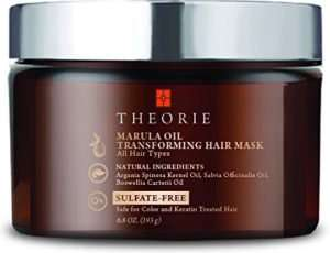 Theorie Marula Oil Transforming Hair Mask