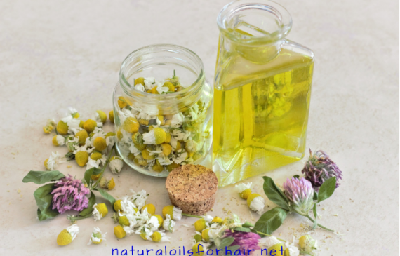 diy sensual massage oil recipe,how to make ayurvedic body massage oil at home,how to make massage oil with coconut oil,what is the best essential oil for massage,how to make massage oil for pain,homemade massage oil for sore muscles,essential oils for romantic massage,massage oil recipe for sore muscles
