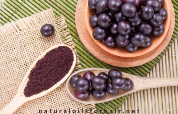 Acai Berry Oil