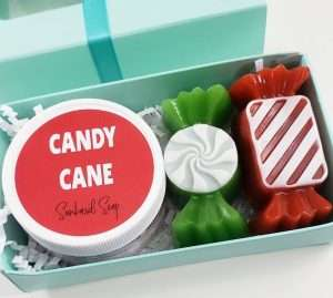 Candy Cane Soap Gift
