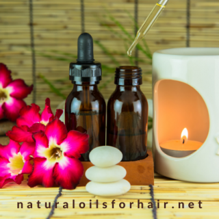 A Mini Guide to Essential Oil BurnersA Mini Guide to Essential Oil Burners